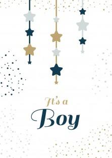 Geboortekaartje It's a boy
