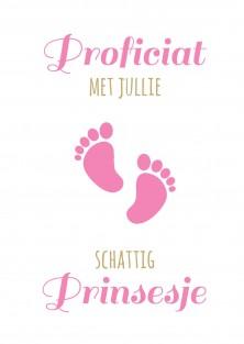 Geboorte wenskaart schattig prinsesje